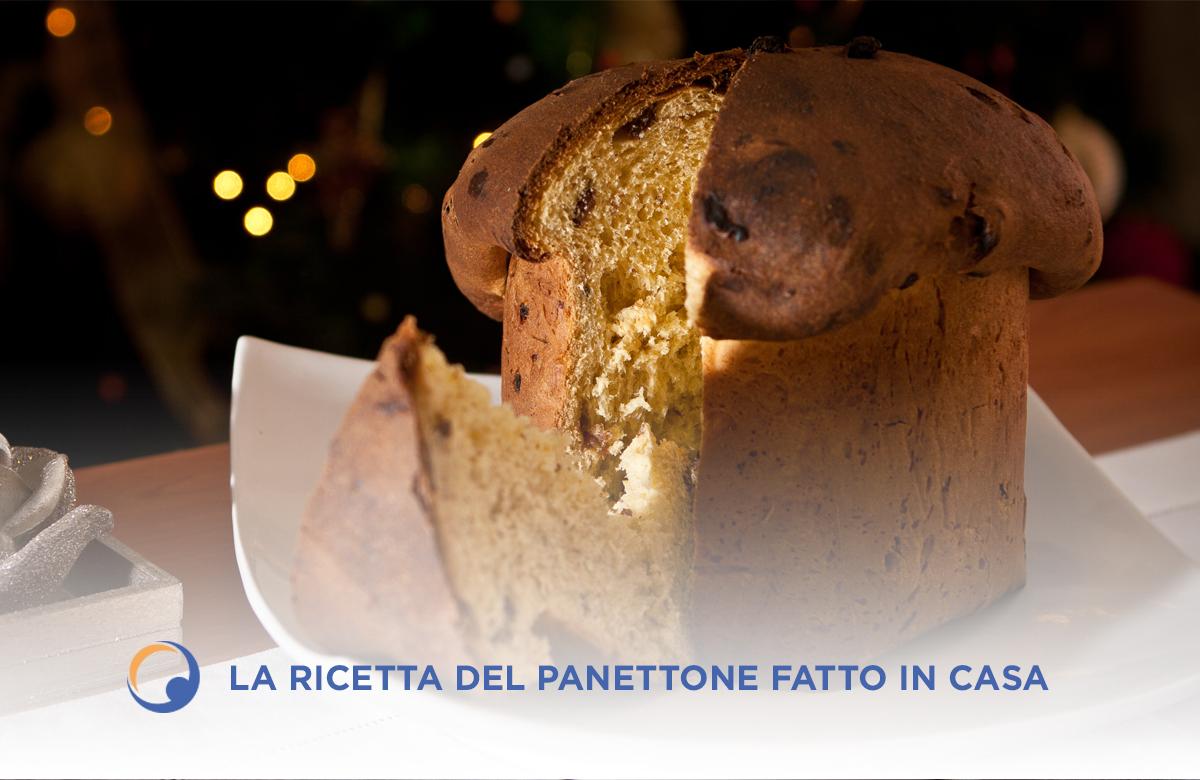 L'impasto del Panettone: uvetta, canditi e cioccolato